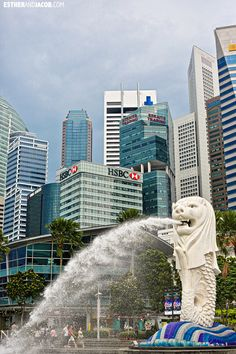How to spend 24-hour overlay in Singapore