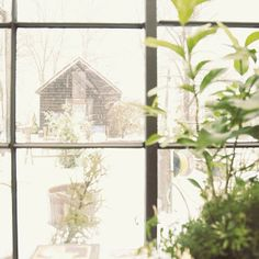 Snow Day. Bohemian Photography, Looking Out The Window, Outside Living, Shades Of White, Cabins In The Woods, Glass House, Garden Design, Snow, Windows