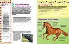 Spread from the Junior level Horseback Riding Badge Booklet Girl Scout Swap, Daisy Girl Scouts, Girl Scout Leader, Girl Scout Troop, Junior Girl Scout Badges, Girl Scout Juniors, Horse Party Decorations, Girl Scout Activities, Family Activities
