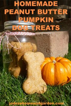 Making your own homemade dog treats can be a fun reward for you dog. … Making your own dog treats allows you to provide your pet with a tasty alternative to his usual doggie biscuit. .