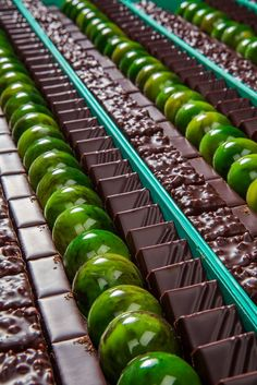 Chocolats - Patrick Roger