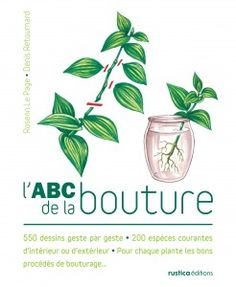 L'ABC de la bouture