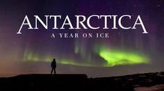 Take a look. Antarctica: A Year On Ice International Trailer