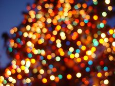 Lights, lights and more lights