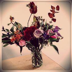 Bb Cactus, Bb, Flowers, Plants, Design, Home Decor, Decoration Home, Room Decor