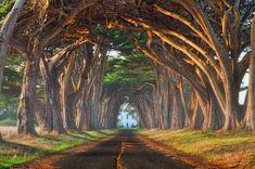 En Californie, 15 magnifiques endroits à visiter absolument !   Actualités Seloger