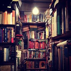 Ravenswood Used Books, one of the coziest book stores I've ever been to.