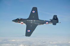 Hawker Sea Hawk, British jet fighter. First flight 1947. by Luigino Caliaro