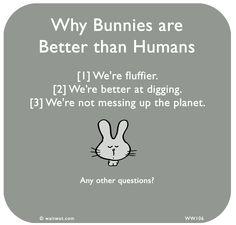 http://questionsmorethananswers.blogspot.com/2011/09/top-ten-reasons-bunnies-are-better-than.html