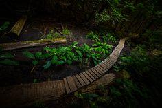 Arcteryx_TrailBuilding.jpg (1800×1200)