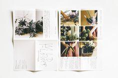 general : wild flower — This Design co.