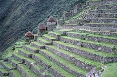 Terrace farming in The Andes