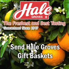 Hale Groves Offers 10% Off of Your Entire Order – Gift Baskets, Fruits and More!