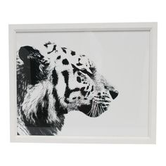 A black and white tiger cat animal photo print with white handcrafted frame, from London-based gallery William Stafford, circa 21st century, England. This London-based gallery features fine-art reproduction prints, contemporary black and white photography, and sepia photography. Available here, a beautiful large-scale profile Tiger cat framed image. Just one available. Authentication on back including unique image number. Also available, another animal print, this of a black and white zebra… Framing Photography, Animal Photography, Large Photo Prints, William Stafford, Large Photos, Unique Image, Art Reproductions, Black And White Photography, Artwork