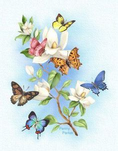 Filled With The LORD'S Glory is a christian eCard with scripture Habakkuk and beautiful art of Jesus with inspiring poetry Beautiful Flowers Wallpapers, Pretty Wallpapers, Beautiful Butterflies, Decoupage Vintage, Decoupage Paper, Butterfly Painting, Butterfly Wallpaper, Butterfly Artwork, Butterfly Pictures