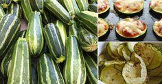 5 snacks saludables de zucchini