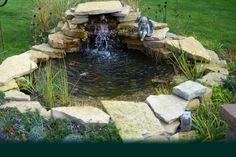 Custom Pro Pond and Waterfall Kit - 5'x 6' - Build Your Own Pond - DIY Backyard Water Garden