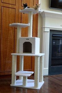 Armacat Tree Furniture Condo Cat Scratching Post Review. Guide Creates the Best Product Reviews and Lists to Help You Make Smarter Buying Decisions.