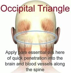 For vertigo,  seizures,  ADD, mood disorders, etc..