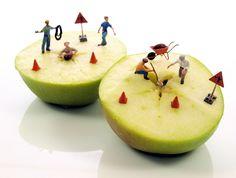 https://flic.kr/p/awi43k | Project 365 - 10/16/2011 - 289/365 | Pesky apple seeds...