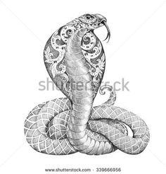 Картинки по запросу кобра рисунок