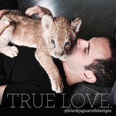 TRUE LOVE #KarmisForever #blackjaguarwhitetiger