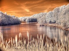 #infrared #photography