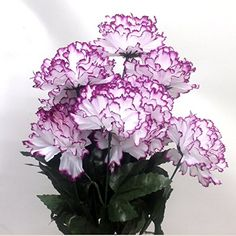 "21"" Large Carnation Bunch 14 Flowers (White Purple) AtoZ Online LLC http://www.amazon.com/dp/B01AVHI9XG/ref=cm_sw_r_pi_dp_8iaOwb0E1W22S"