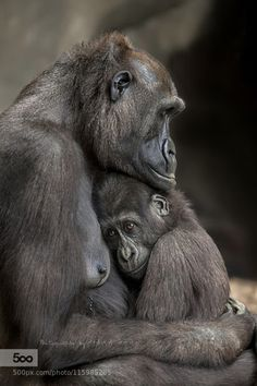 ❥mother loves her baby