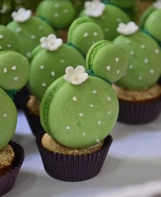Wonderful Images Birthday Flowers party Style If you're looking for any consid.- Wonderful Images Birthday Flowers party Style If you're looking for any considerate as well as pleasurable bday gift to get an associate or mayb Macaroons, Cute Desserts, Dessert Recipes, Party Recipes, Dinner Recipes, Cute Food, Yummy Food, Cactus Cake, Cactus Cactus