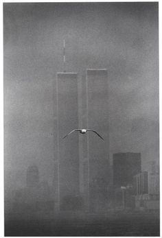 The Twin Towers (World Trade Center)