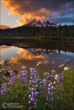 """""""Reflection Lake Sunset"""" (Mt. Rainier National Park) - Washington State."""