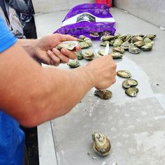 Fresh from the Gulf of Mexico #oysters at @murderpointoysterco. @alseafood @worldfoodchampionships #butterlove #wfcblogger2016 #wfc2016