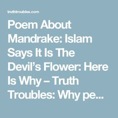 Poem About Mandrake: Islam Says It Is The Devil's Flower: Here Is Why – Truth Troubles:  Why people hate the truths' of the real  world
