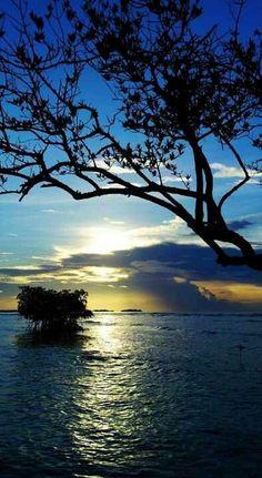 Beautiful View from La Guancha, Ponce, Puerto Rico   La Beℓℓe ℳystère