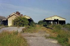 https://flic.kr/p/aHwwkx | Glastonbury S & D.J.R | Glastonbury Station is still remarkably complete, including the island platform buildings in this July 1981 view looking towards Highbridge. Everything in this photo has since been swept away and a small industrial estate now occupies the site.