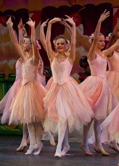 Classical Ballet Theatre: Photo Gallery: Nutcracker 2014