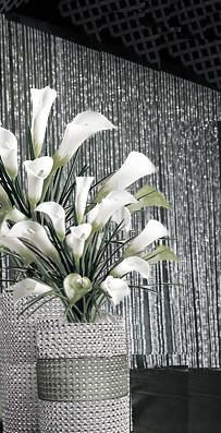 Crystal Rain Backdrop Panels - if we're in a large venue for the reception, this might work.