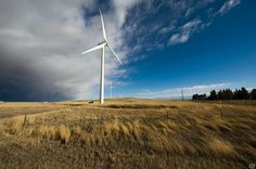 Global #wind and #solar costs to fall even faster - Report - #GLOBE-Net #OsceolaEnergy