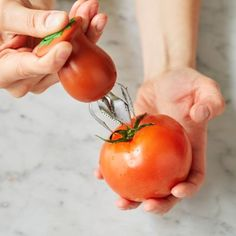Chef'n Hullster™ Tomato Corer, available at #surlatable