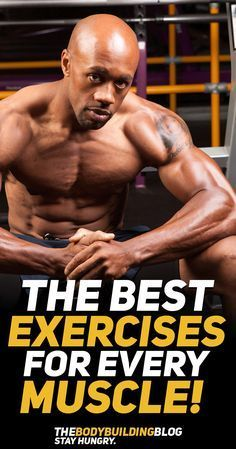 While there are universal compound exercises that are amazing for developing an overall symmetrical physique there are specific exercises that highly benefit each muscle group individuall! Find out what are the best exercises for every muscle group and make sure that you integrate them in your workout program! #fitness #gym #exercise #exercisefitness #exercises #workout #fit #muscle #bodybuilding