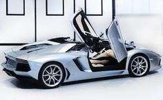 It features Lamborghini's trademark scissor doors.