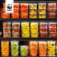 Plastikmüll ist ein großes Problem für unsere Umwelt! Plastik lauert leider…