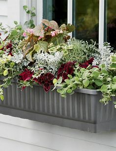 "39"" and 23"" Self-Watering Windowboxes in a choice of colors. Water-level indicator lets you know when to fill reservoir."