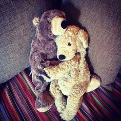 Everybody needs a hug sometimes. #keephugging #hug #everybodyneedsahug #lovelaughlobilat #loveandhugs #fluffyfriends #fluffy #fff #friends #hugtime #bearsofinstagram #dogsofinstgram #lobilat #holdme #flauschig