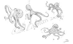 Octopus Designs by davidsdoodles.deviantart.com on @deviantART  ★ || CHARACTER DESIGN REFERENCES (www.facebook.com/CharacterDesignReferences & pinterest.com/characterdesigh) • Love Character Design? Join the Character Design Challenge (link→ www.facebook.com/groups/CharacterDesignChallenge) Share your unique vision of a theme every month, promote your art and make new friends in a community of over 20.000 artists! || ★
