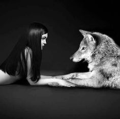 Most Likes 10 Wolf Wallpapers – Phone Wallpapers Wolf Spirit, Spirit Animal, Animal Espiritual, Wolf Hybrid, Wolves And Women, Wolf Wallpaper, Wolf Love, Wolf Pictures, Beautiful Wolves