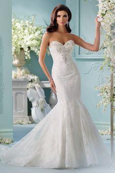 212 Best David Tutera Wedding Dresses Images Bridal Gowns Groom