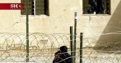 O Ministério iraquiano da Defesa anunciou esta quinta-feira ter executado 38 militantes jihadistas, condenados por atos terroristas. Bagdade garante que eram todos membros do Daesh. http://sicnoticias.sapo.pt/especiais/ei/2017-12-15-Mais-de-30-militantes-doDaeshexecutados-no-Iraque