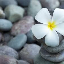 Image result for serenity peace